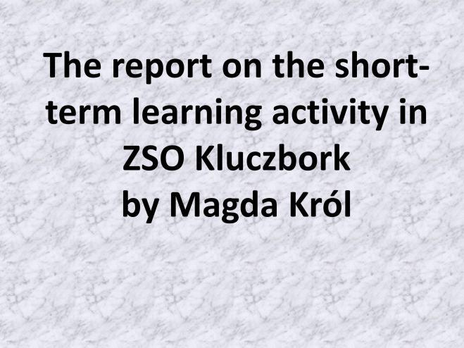 MKról report en_01